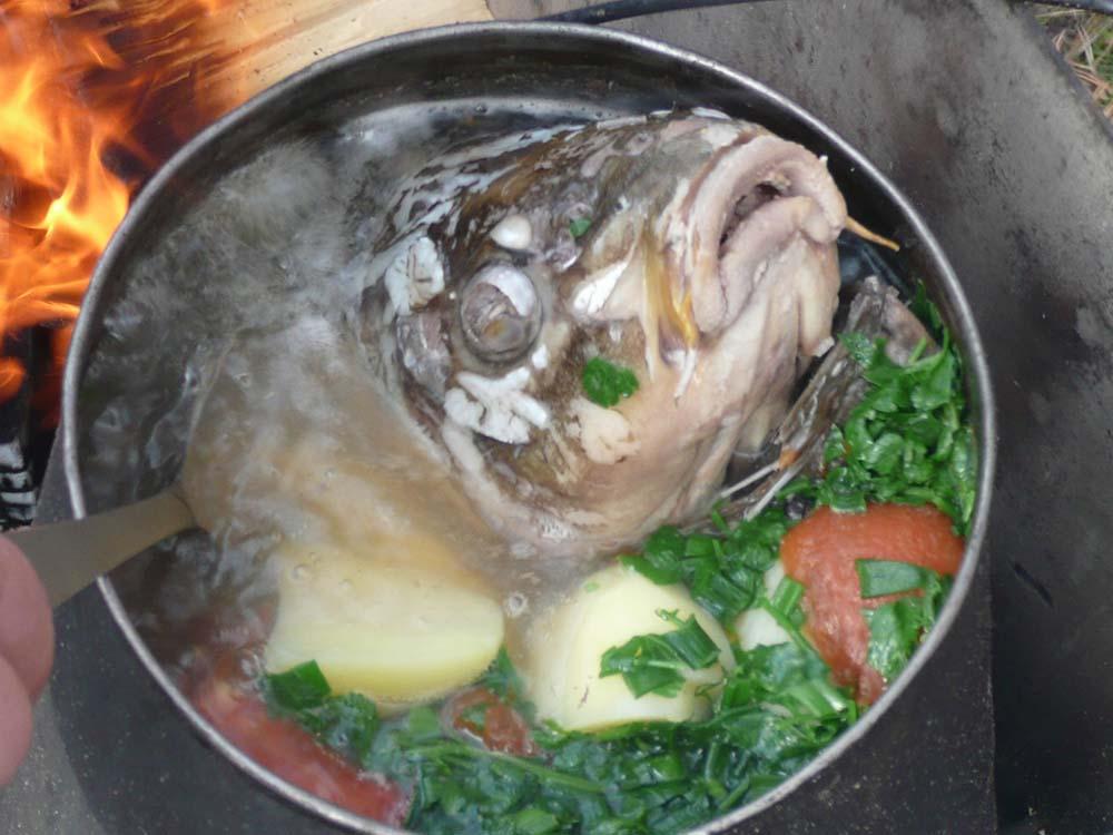 уха из рыбы рецепт с фото пошагово